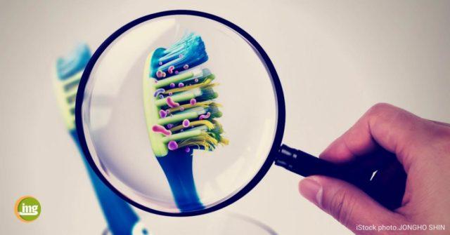 Zähne und Prophylaxe - Mund oder Müll: Wohin mit der Zahnbürste nach einer Erkältung?Wir erklären, warum die Zahnbürste nicht nach jedem Schnupfen in den Müll gehört.