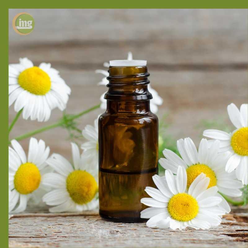 Das Hausmittel Kamille wird oft als Tee bei Zahnschmerzen eingesetzt.