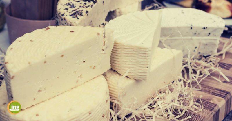 Eine Auswahl verschiedener Käsesorten